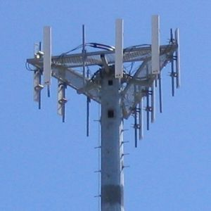 section antenna